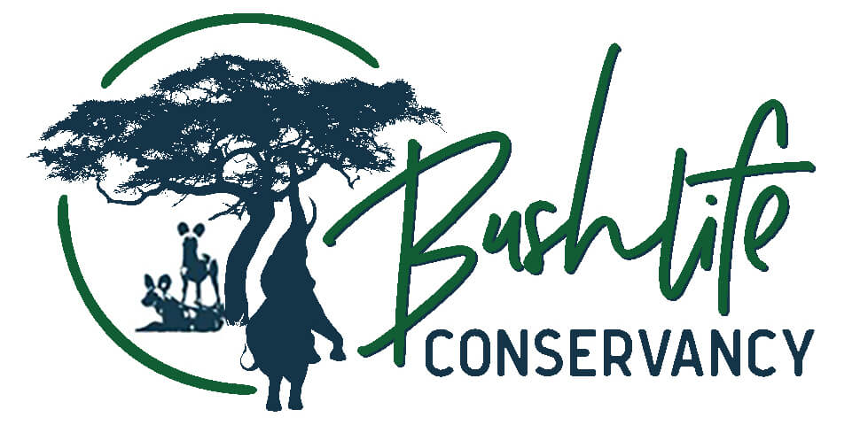 Bushlife-Conservancy-Logo-wildogs-and-elephants.jpg