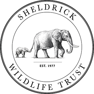 sheldrick-primary-etched.jpg